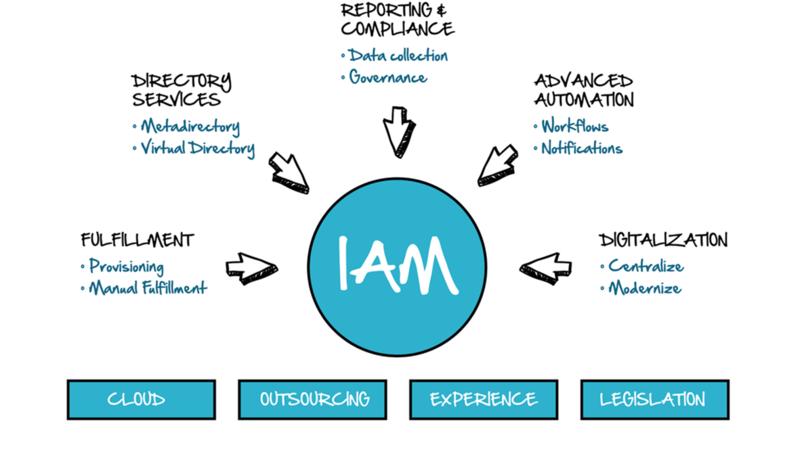 IAM-Diagram-100mm-1