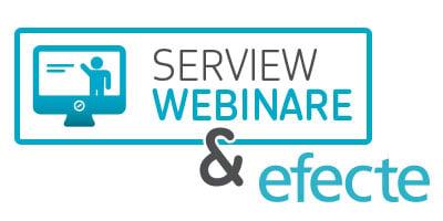 Serview and Efecte shared webinar on agile itsm